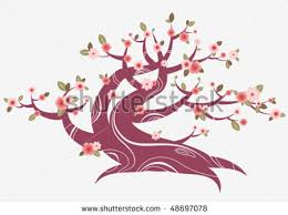 the around us graphic design pink cherry blossom tree