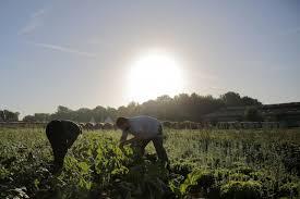 chambre d agriculture oise ferme des 4 saisons chevrieres oise 60 bienvenue à la ferme