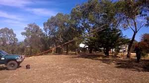 tree felling by remote test
