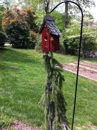 How To Keep House by Keep Snakes Out Of Your Bird House Growing In My Gardengrowing