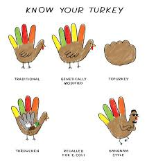 thanksgiving birds of america the globe and mail