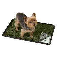 poochpads indoor turf dog potty plus petco