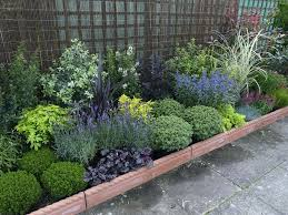 Rock Garden Plants Uk Evergreen Garden Plants Evergreen Rock Garden Plants Autouslugi Club