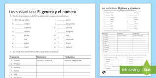 nouns gender and number activity sheet spanish grammar