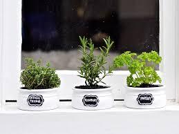 kitchen herb garden ideas 5 kitchen herb garden ideas kitchen connection