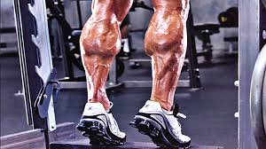 Calves Meme - 3 reasons your calves aren t growing t nation