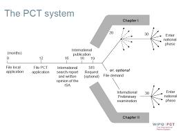 international bureau wipo pct patent application basics the office of matthew m yospin