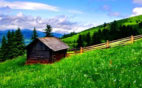 Beautiful Mountain Houses by Mountains Beautiful Place Grass Peaceful Soring Time Tree