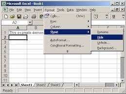 ms excel 2003 hide a sheet