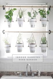 Kitchen Window Sill Decorating Ideas by Top 25 Best Window Plants Ideas On Pinterest Apartment Plants