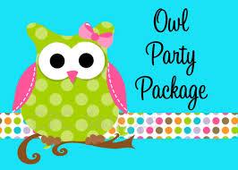 owl birthday party decoration u2014 criolla brithday u0026 wedding