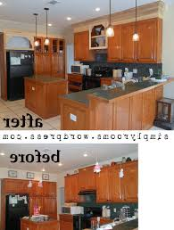 kitchen kitchen cabinet shelves pertaining to marvelous project