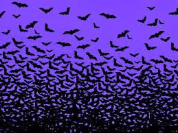 purple halloween backgrounds 68 entries in bats wallpapers group