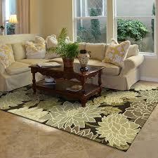 Area Rugs Ideas Attractive Living Room Area Rugs Ideas Alluring Small Living Room