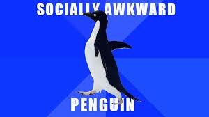 Meme Penguin - socially awkward penguin know your meme