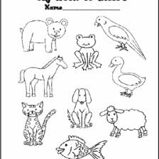 eric carle coloring pages coloring page brown bear kids drawing and coloring pages marisa