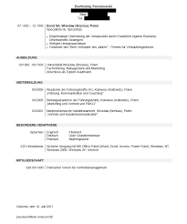 German Resume Template Work Examples Infinity Careers