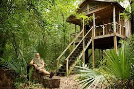 Cat Treehouse Finding Peace And Quiet In An Edisto River Treehouse Features