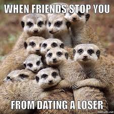 Memes Animals - animal memes that perfectly describe your sad single life