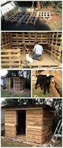 457 best pallet projects for animals images on pinterest pallet