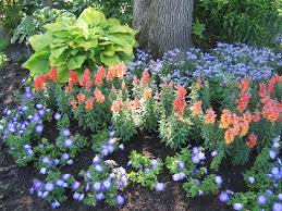 amazing simple and colorful landscaping ideas u2013 easy simple