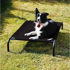 furnitures mesh dog beds coolaroo dog bed dog bed kuranda
