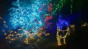 Zoo Light Portland by The Grotto In Portland Oregon 2016 Youtube