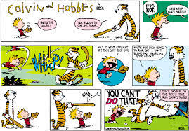 calvin the calvin and hobbes wiki fandom powered by wikia
