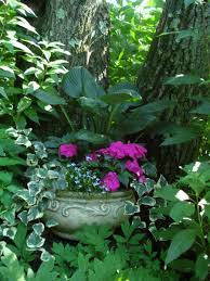 beautiful planter and the choice of plant combinations is great