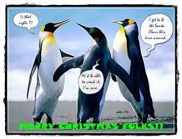 penguin christmas free humor u0026 pranks ecards greeting cards