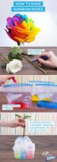 best 25 rainbow flowers ideas on pinterest different color