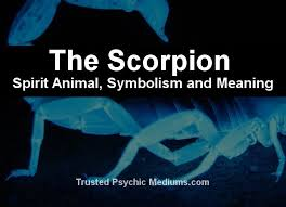 the scorpion spirit a guide to meaning and symbolism
