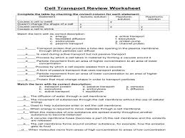 cell transport review answers u2013 guillermotull com