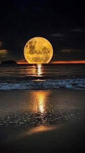 moonlight outdoor lighting 239 best moonlight images on pinterest beautiful places