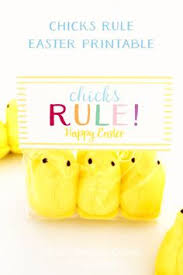 Easter Decorations For Your Car by Easter Decoration For Your Car Easter Decorations Pinterest