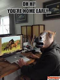 Horse Head Meme - 106 best horses and bayonets images on pinterest animal