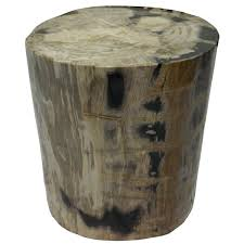 bernhardt petrified wood side table remarkable petrified wood table black and grey side 18 x 14 organic
