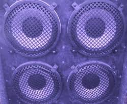 12 Inch Bass Cabinet Speakers
