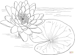 best monet water lilies coloring page for kids with super easy