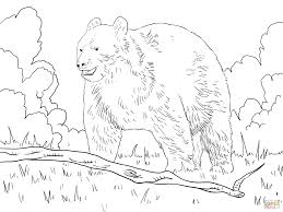 black bear in a forest coloring page free printable coloring pages