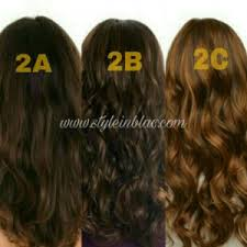 2a hair know your hair type beginners guide style in blac