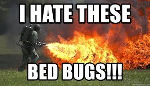 Bed Bug Meme - i hate these bed bugs flamethrower meme generator