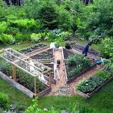 Herb Garden Layout Ideas Garden Box Layout Financeintl Club