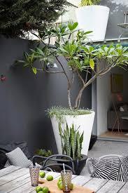decoration terrasse exterieure moderne decoration pour mur exterieur de jardin bivoli
