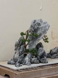 miniature rock garden 15590