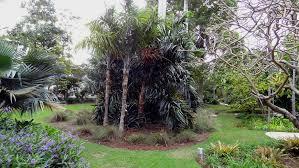 Miami Beach Botanical Garden by Miami Beach Botanical Garden Youtube