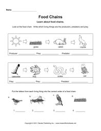 printables food chain worksheet ronleyba worksheets printables