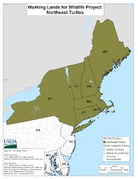 North East Map Northeast Turtle Project Nrcs