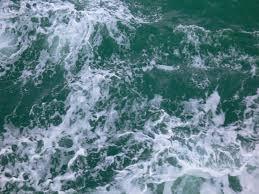 nước biển cho hồ nước mặn