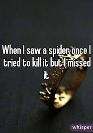 I Tried Killing A Spider - i saw a spider once i tried to kill it but i missed it